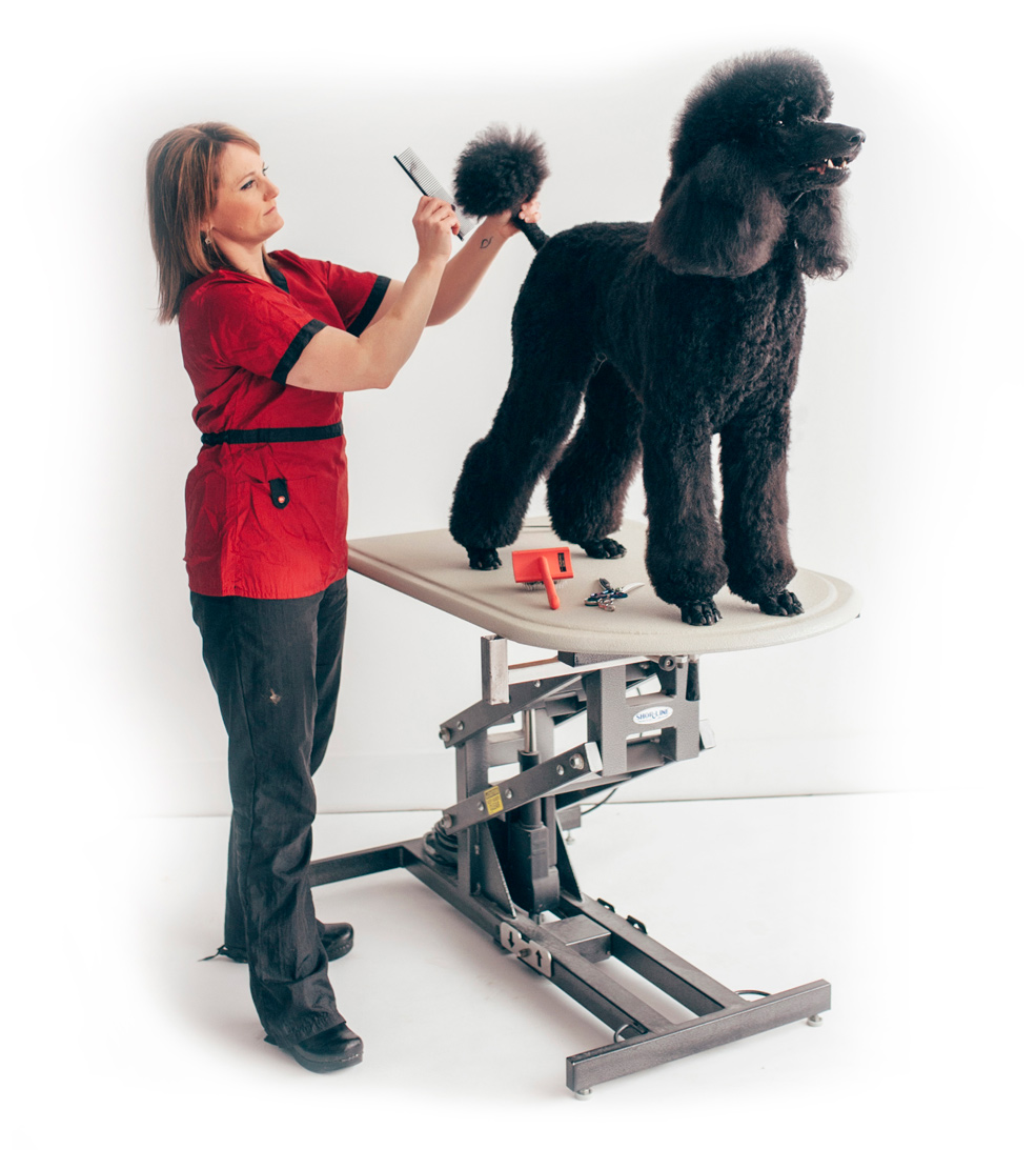 Platinum Paws Pet Grooming